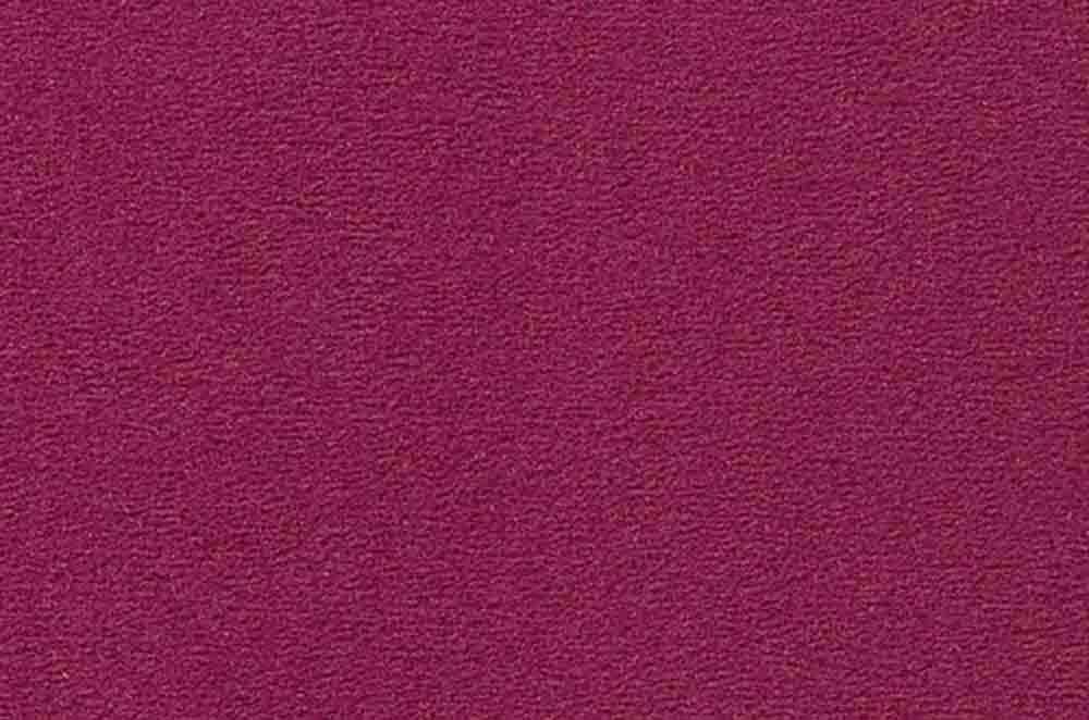 2VS66 Lavendel