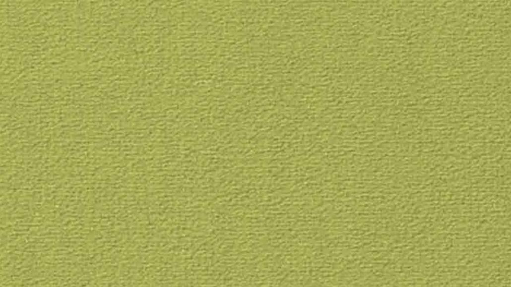2VS61 Lindgrün